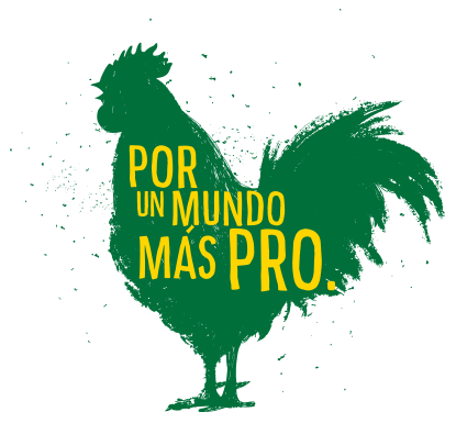galo_espanhol_415x385px