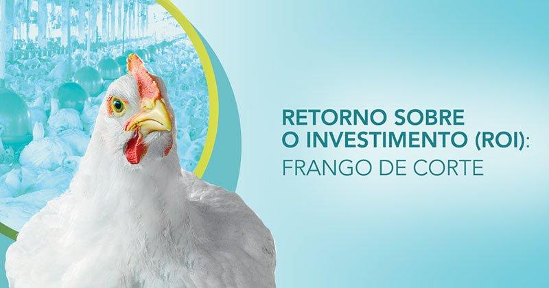 Probiótico para frango de corte: como calcular o retorno sobre o investimento (ROI)?