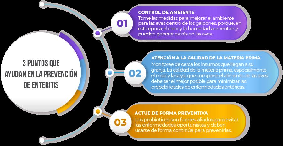 3 puntos que ayudan en la prevención de enteritis